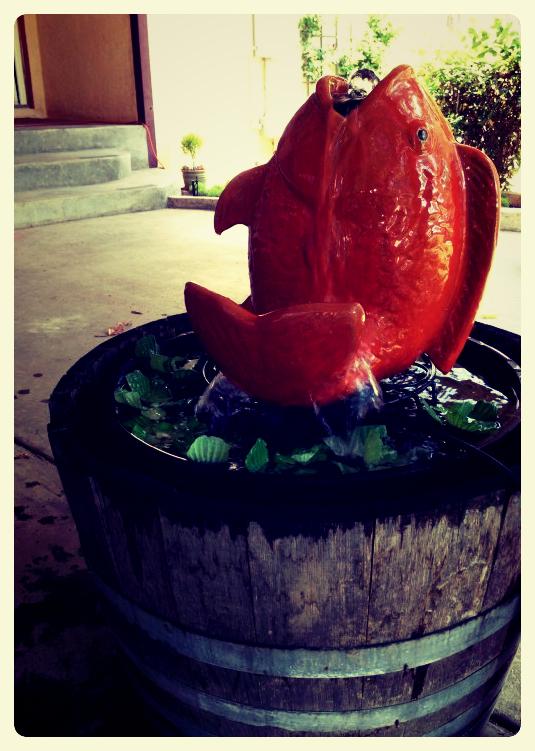 Fountain barrel_Fotor
