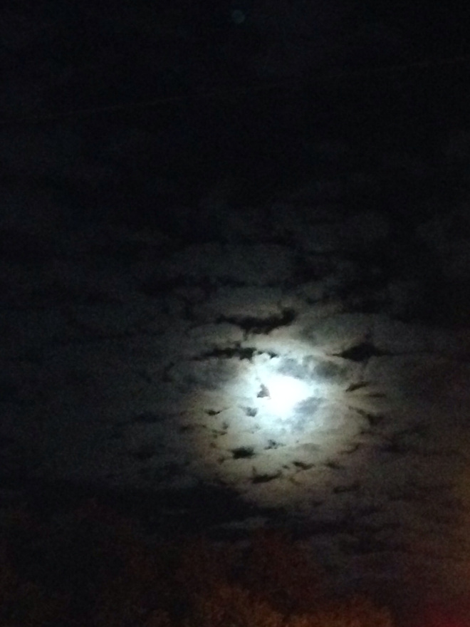 The strangest things happen beneath the light of a full moon.
